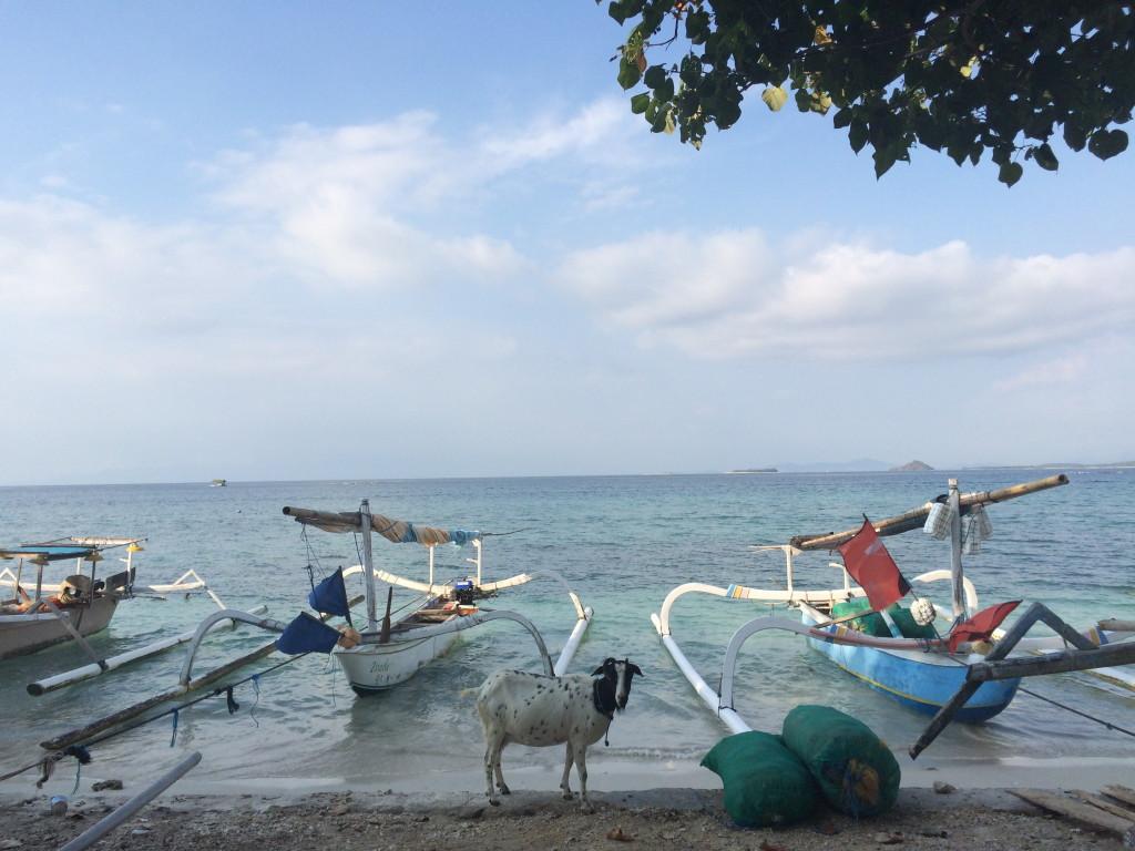 Gili Gede - Lombok