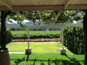 vineyard villa south africa