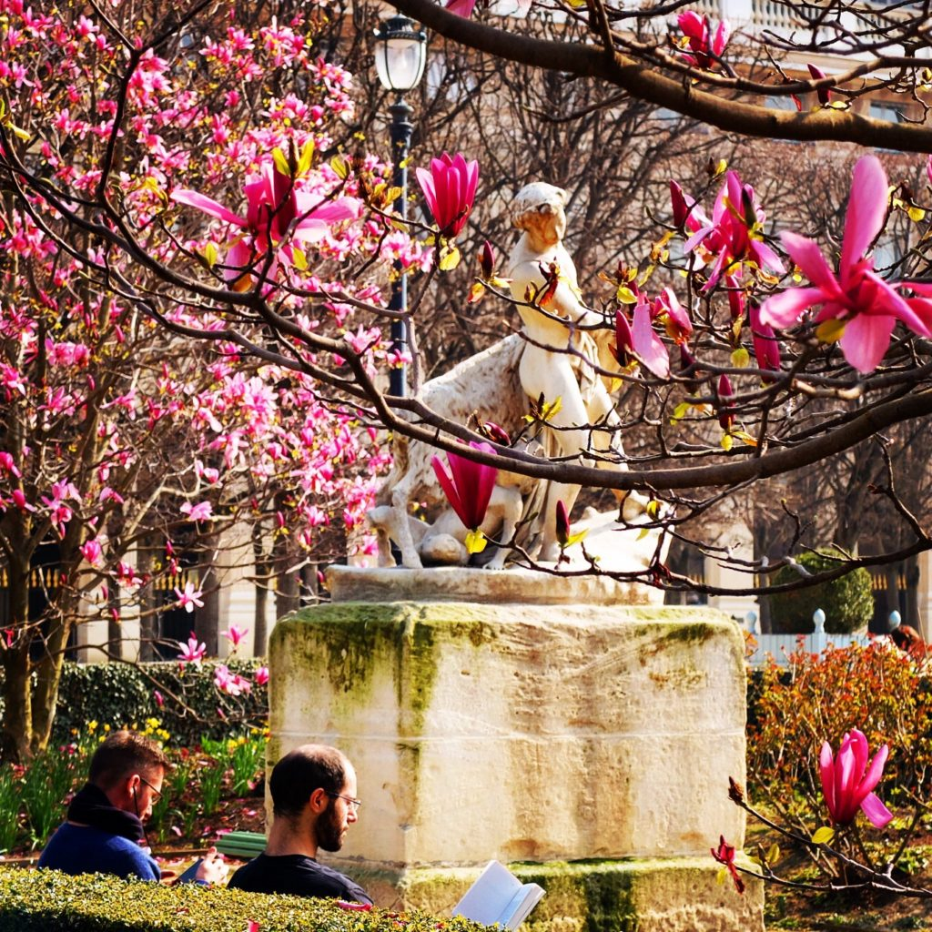 Romantic Places to Propose in Paris Other Than the Eiffel ...