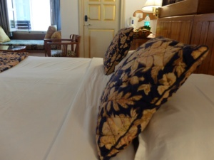 Bal-Samand-Palace-Hotel-room