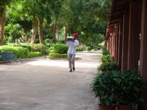 Bal-Samand-Palace-Hotel-staff