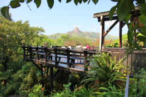 The Mantenga Lodge, a Beautiful Base in Eswatini/Swaziland