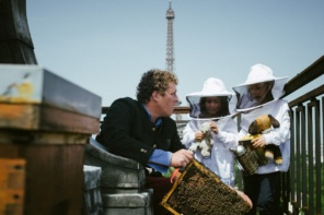 The Bees (and Honey) of Paris