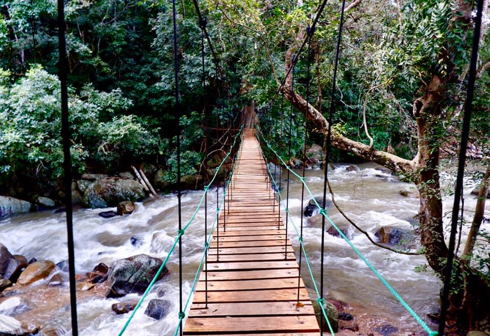 Ella Jungle Resort suspension bridge