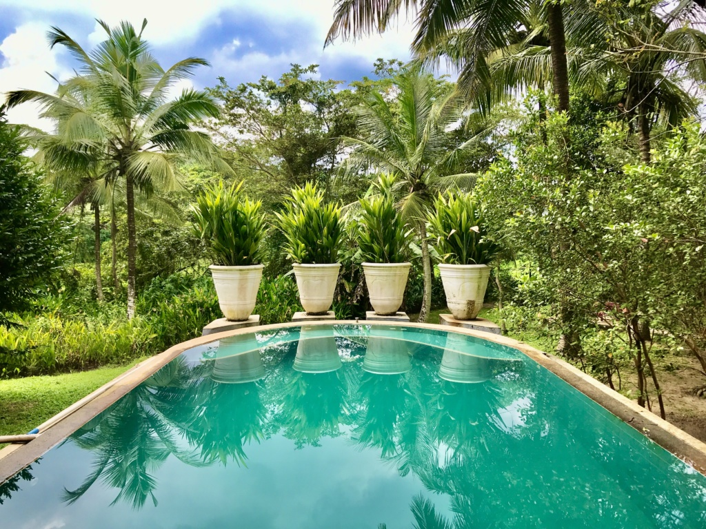 Casa Heliconia pool