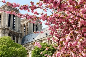 Notre-Dame-de-Paris-in-Spring